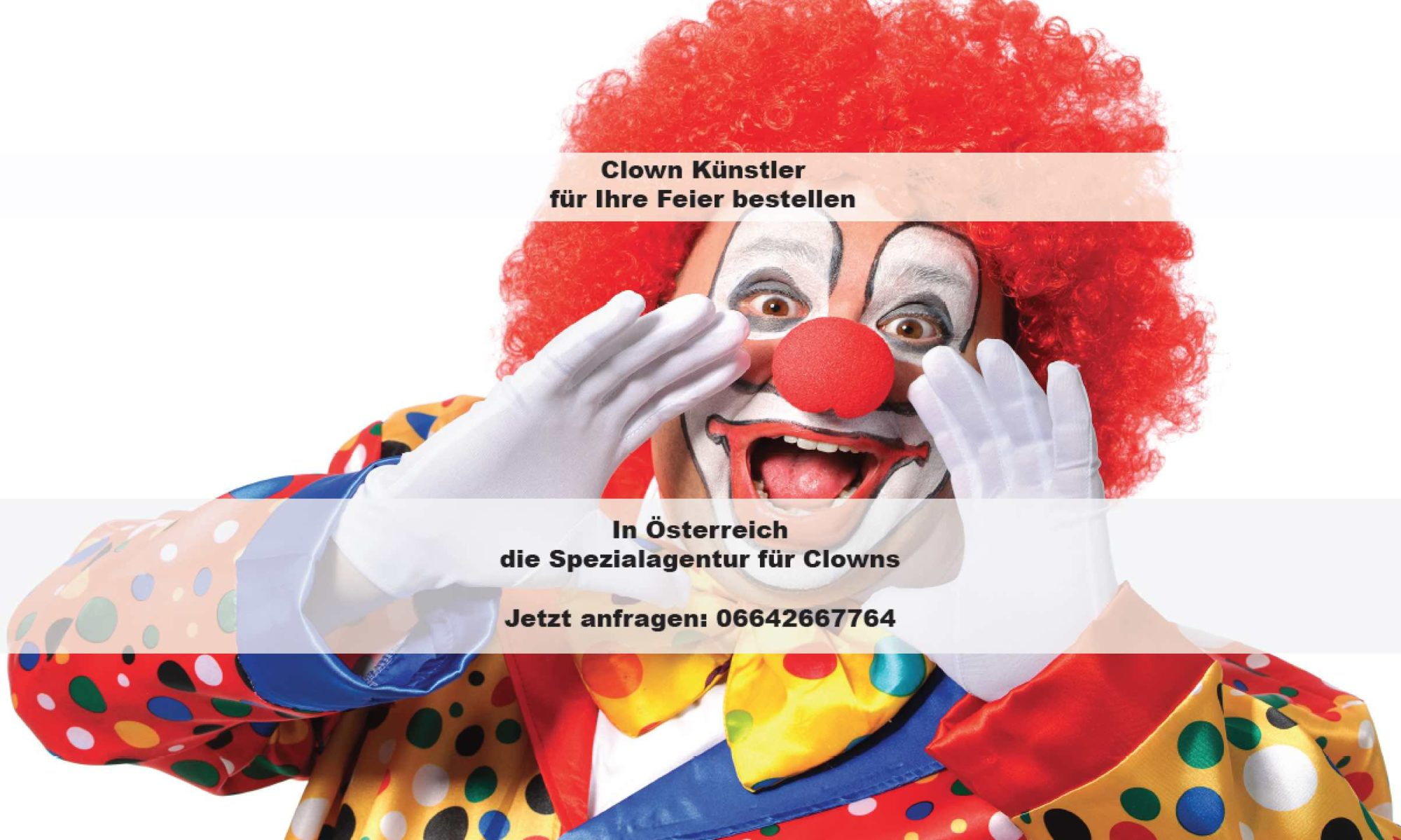 Clown für Ihre Feier bestellen, Clown Wien, Clown Graz, Clown Salzburg, Clown Linz, Clown St.Pölten, Clown Eisenstadt, Clown mieten, Clown Kindergeburtstag, Clown Kindergarten, Clown Show, ZauberClown Show, Ballon Modellage